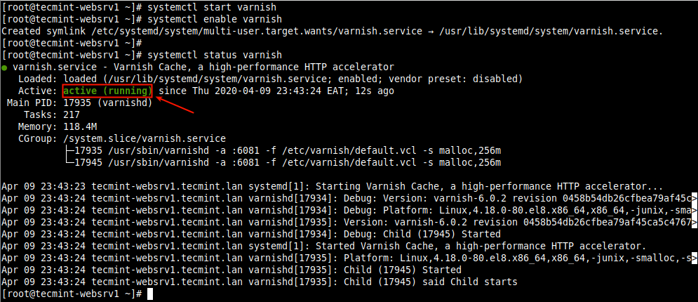 Verify Varnish Cache Status