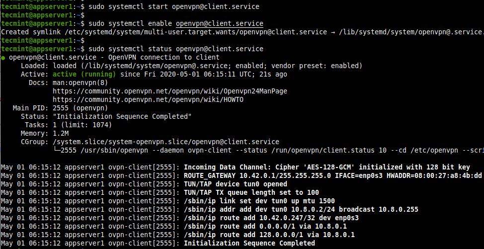 Start OpenVPN Client Service