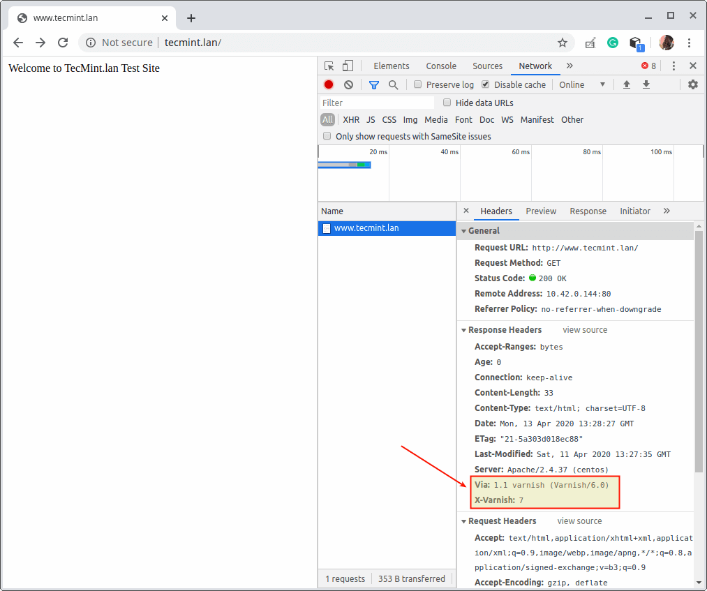 Check Web Page is Served via Varnish Cache