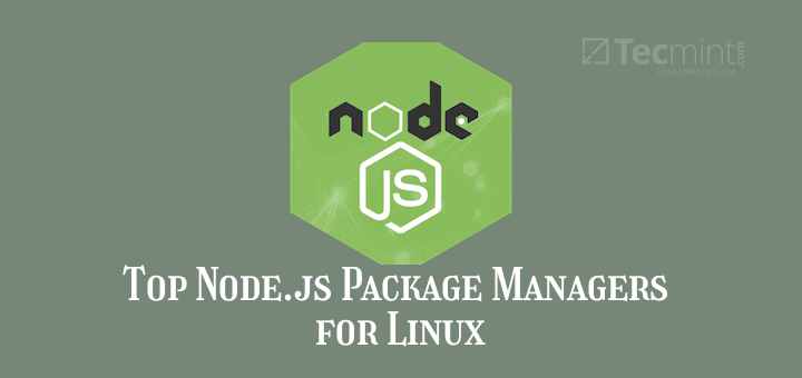 Node.js Package Managers for Linux
