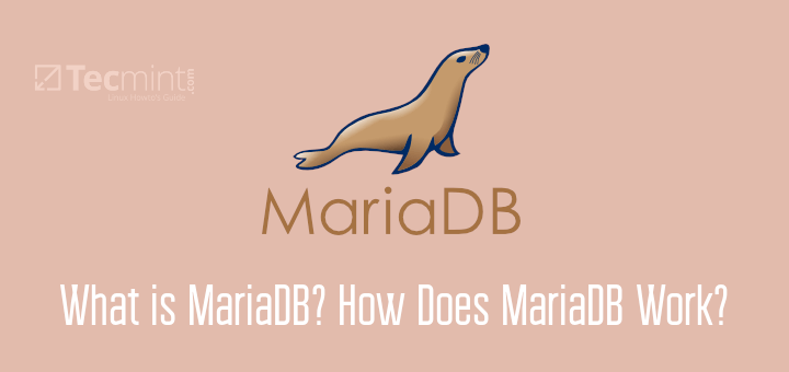 What is MariaDB Server