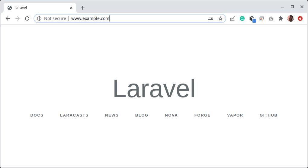 Laravel Web Page