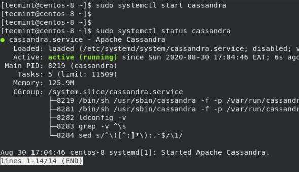 Verify Apache Cassandra Status