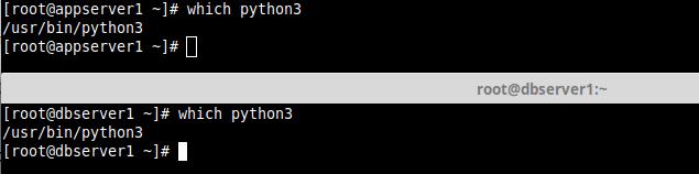 Check Python3 Binary