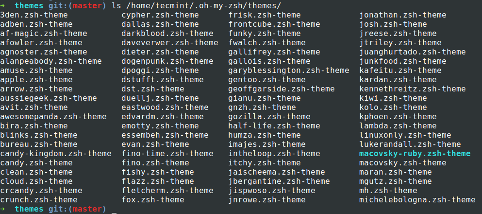 oh-my-zsh themes