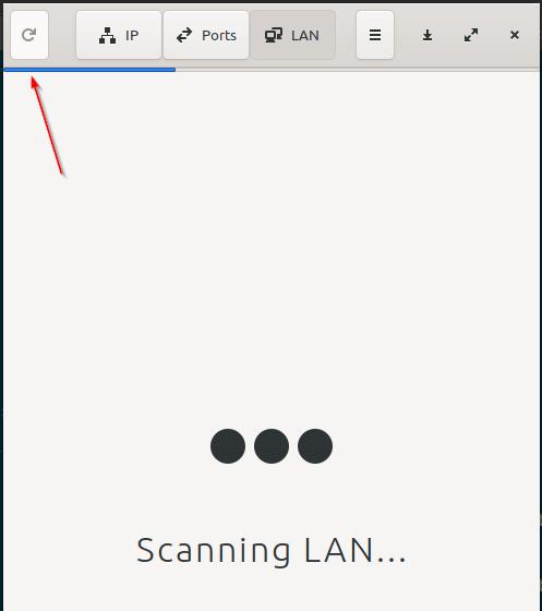 What IP Scanning