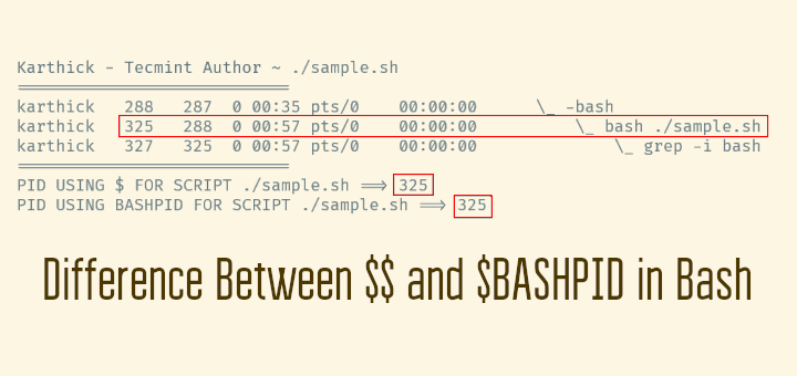 Learn Difference Between $$ and $BASHPID in Bash