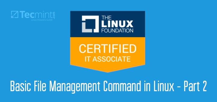 Linux File Management Commands