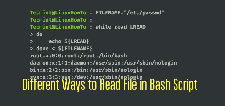 Read File in Linux