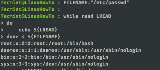Store Filename in Variable