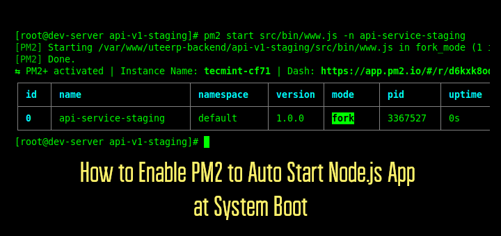 Enable PM2 to Auto Start Node.js App at Boot