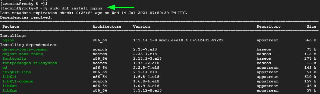 Install Nginx on Rocky Linux