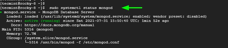 Check MongoDB Status