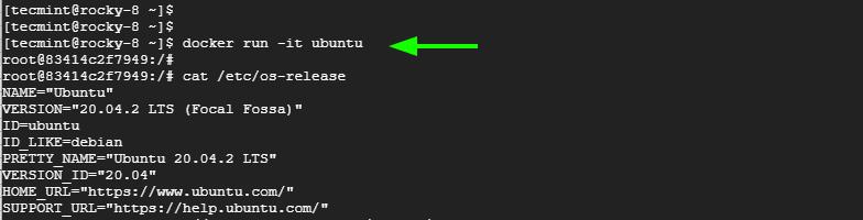 Run Ubuntu Docker Container