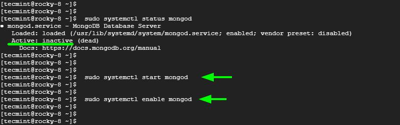 Start MongoDB Service