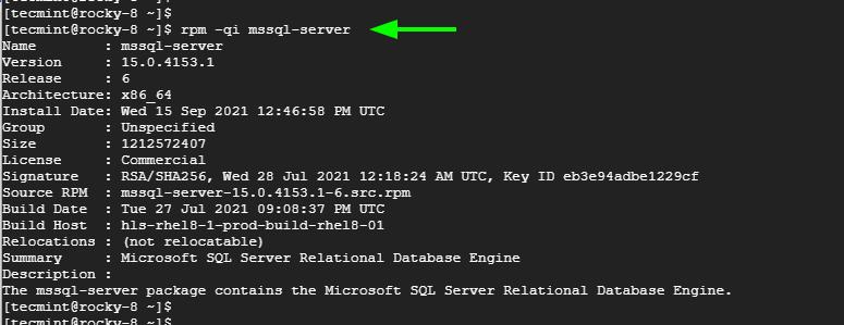 Verifique la instalación de Microsoft SQL Server